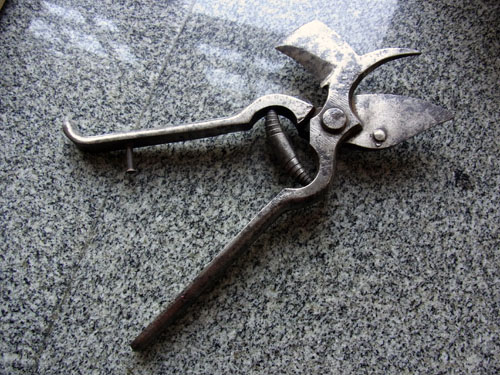 Secateurs a for Gardening tools for sale