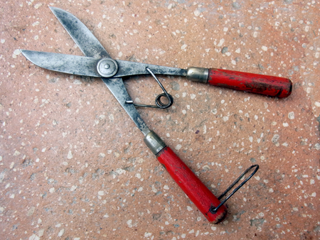 Childs Shears  A