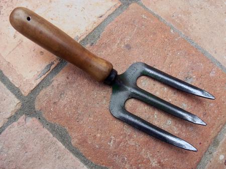 Hand Fork  C