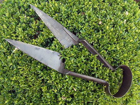 topiary-shears-d1-jpg