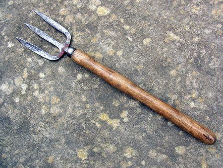 hand-fork-p1-jpg
