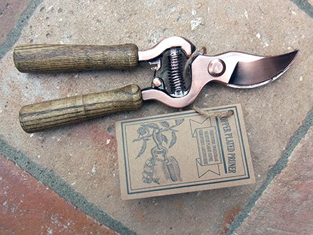 secateur-shears-d1-jpg