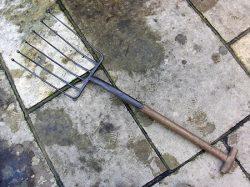 beet-fork-a1-jpg