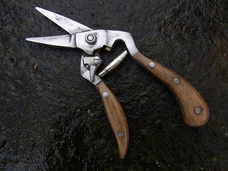 flower-scissors-g1-jpg