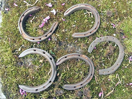 horse-shoes-b1-jpg