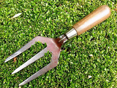 hand-fork-r1-jpg